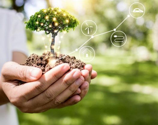 Corporate Social Responsibility Strategy of Energy Companies